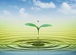 Нескучный день в Аксаковке посвятят водным ресурсам.